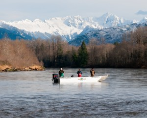 Skagit River Fishing