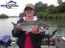 new_Pink-Salmon009
