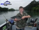new_Pink-Salmon010