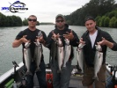 new_Pink-Salmon013