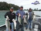 new_Pink-Salmon030